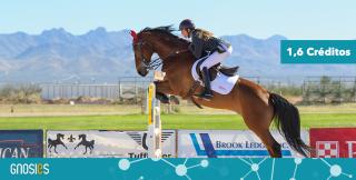 Formação Pedagogia Equestre